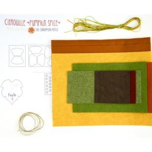Citrouille pumpkin spice kit feutrine 1