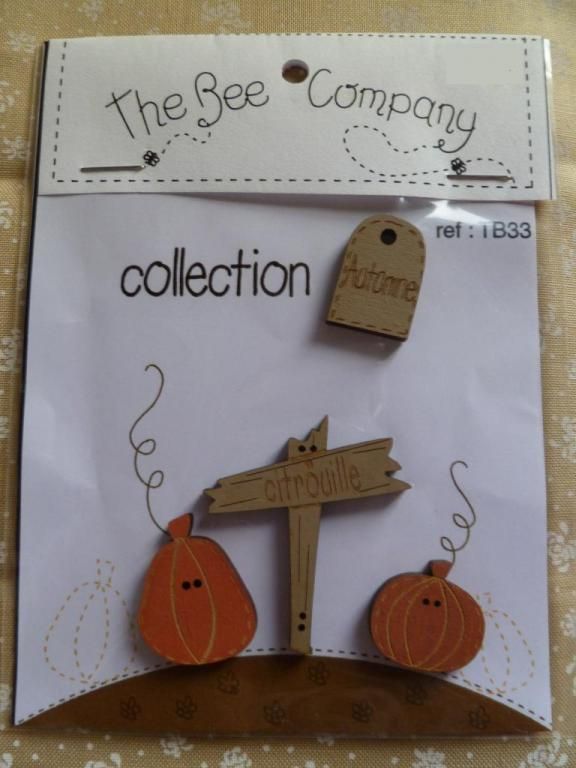 Collection Automne TB33