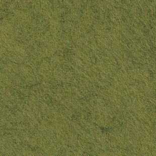 Feutrine vert mousse cp040