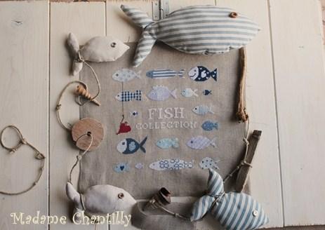 fish-collection.jpg