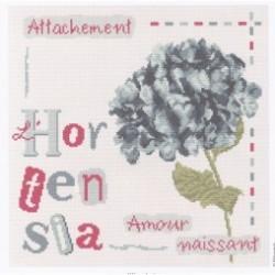 L'Hortensia J008 Lilipoints