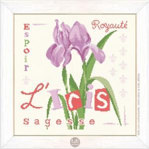 L iris lilipoints1