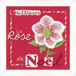 La rose de Noël J006