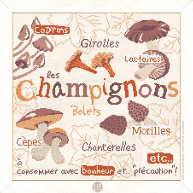 Les Champignons G022 Lilipoints