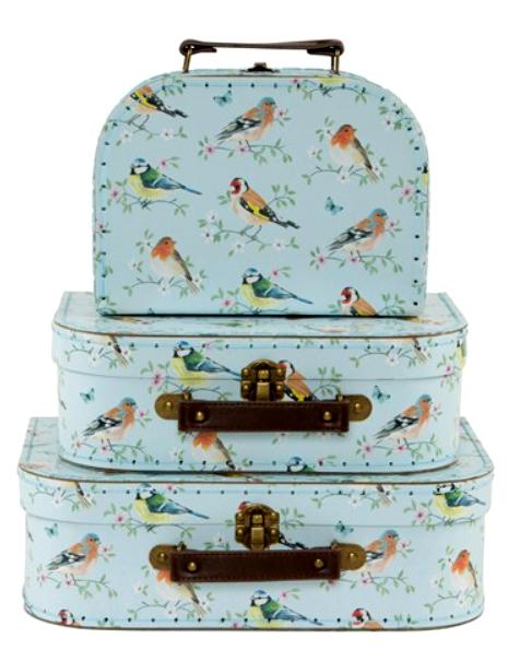 Lot de 3 valisettes oiseaux