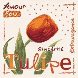 La tulipe J003