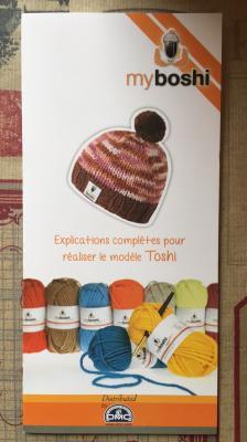 Explications pour le modèle Toshi