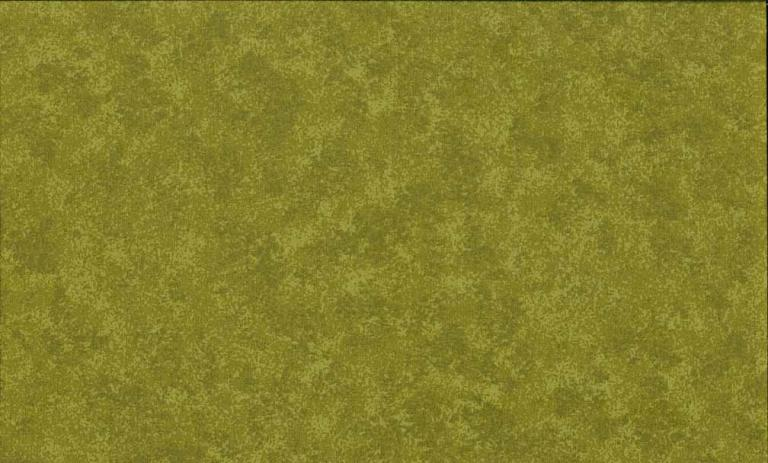 Tissus Patchwork Makower faux Unis Spraytime  G05 VERT MOUSSE