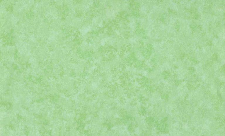 Tissus Patchwork Makower faux Unis Spraytime  G45 MENTHE VERTE