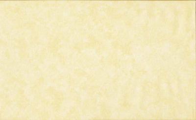 Tissus Patchwork Makower faux Unis Spraytime Q03 CREME