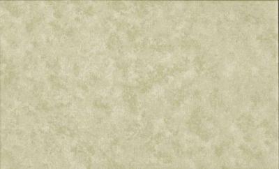 Tissus Patchwork Makower faux Unis Spraytime S53 GRIS BEIGE