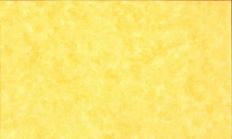 Tissus Patchwork Makower faux Unis Spraytime  Y32 JAUNE CLAIR