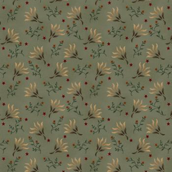 1583 11 liberty star