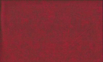 Tissu Patchwork Andover 1867R2 Carmine