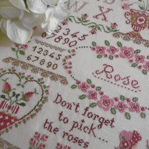21 01 17 rose sampler 030