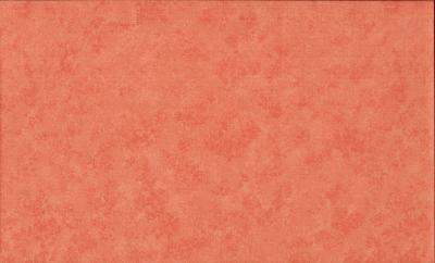 Tissus Patchwork Makower faux Unis Spraytime C61 PECHE