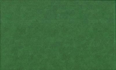 Tissus Patchwork Makower faux Unis Spraytime G67 NOËL VERT