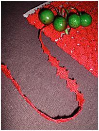 Dentelle Picots Rouge 10mm