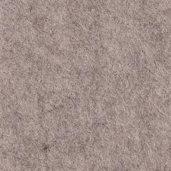 Feutrine Cinamonn Patch BOIS FLOTTE CP048