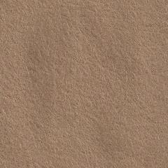 Feutrine Cinamonn Patch CAMEL CP088