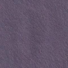 Feutrine Cinamonn Patch CHARDON  CP027