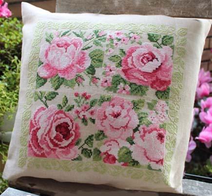 Delightful pink roses lesley teare