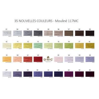Dmc117 carte nouveaux coloris 1