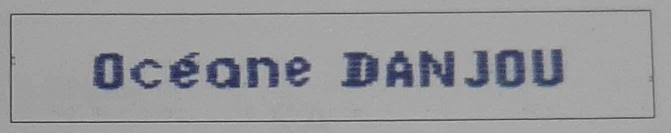 Etiquettes nom et prenom brodees pour vetements bleue modele n