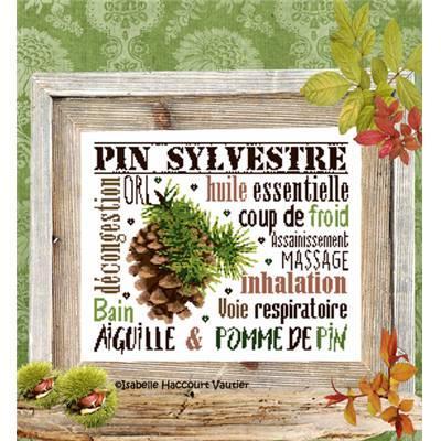 Aiguille & Pomme de Pin BDN57 Isabelle Haccourt Vautier