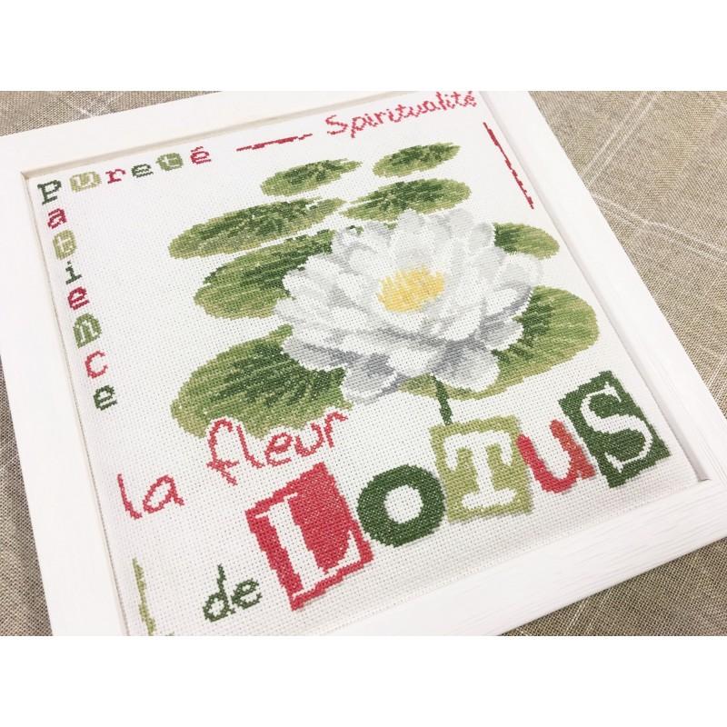 La fleur de lotus lilipoints