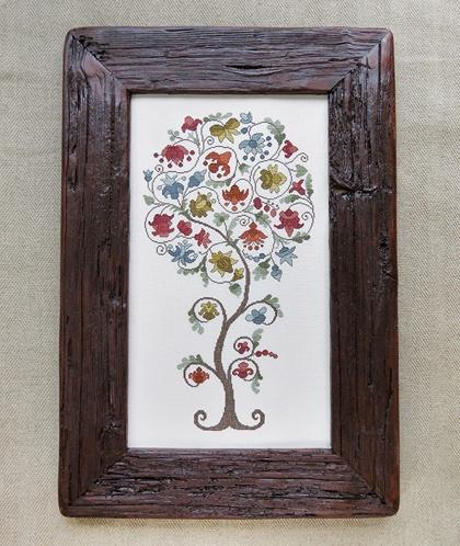 Legendary tree renato parolin