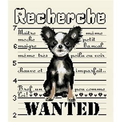 Li17 chien wanted