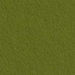 Feutrine Cinamonn Patch LICHEN CP054