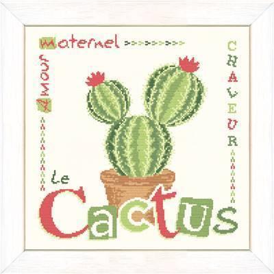 Le cactus J016 Lilipoints