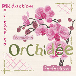 Lp l orchidee