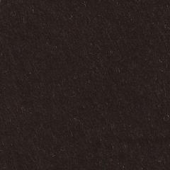 Feutrine Cinamonn Patch NOIR CP050