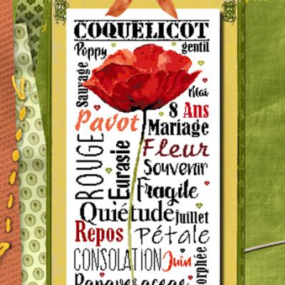 Gentil coquelicot BDN49 Isabelle Haccourt Vautier