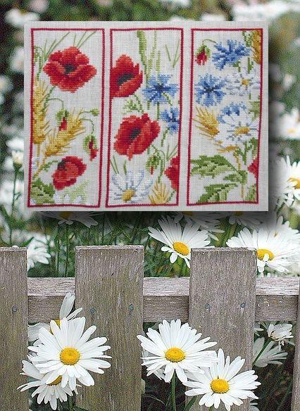 Signets fleurs des champs 1069