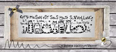 Sous Haute Surveillance BDN05 Isabelle Haccourt Vautier