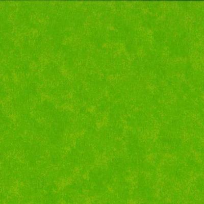 Tissus Patchwork Makower faux Unis Spraytime  G02 VERT