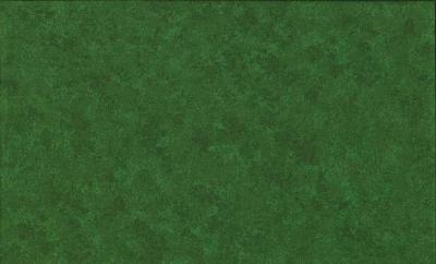 Tissus Patchwork Makower faux Unis Spraytime  G09 VERT FONCE