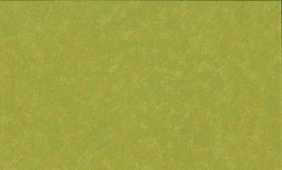 Tissus Patchwork Makower faux Unis Spraytime  G33 VERT PISTACHE