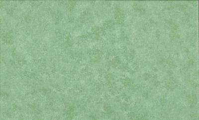 Tissus Patchwork Makower faux Unis Spraytime  T03 VERT CLAIR