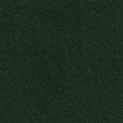 Feutrine Cinamonn Patch 30 x 45 cm VERT BOUTEILLE CP042